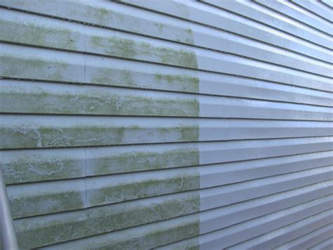 remove mold from siding of house pressure washing painting innovations