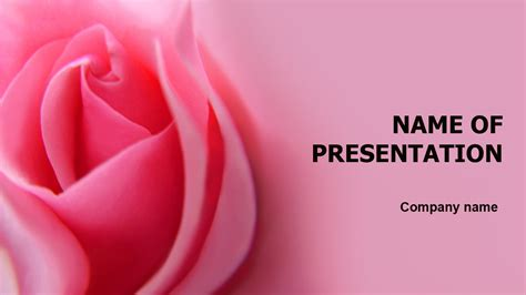 theme powerpoint rose download free rose powerpoint template for your presentation
