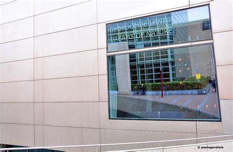 finestra cortile la finestra sul cortile juzaphoto