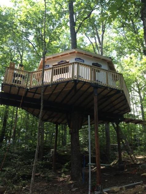 tree houses in virginia 3 treehouses you can rent in west virginia