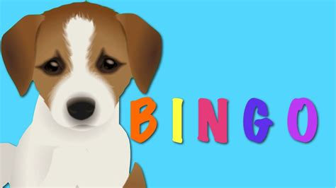 songs for dogs bingo song nursery rhyme animation rhymes for children