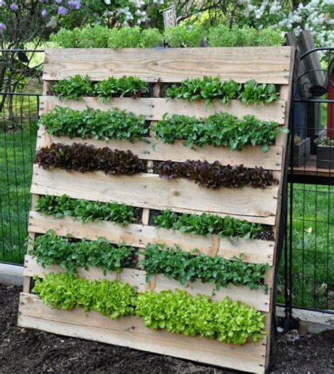 Recycled Vertical Garden Ideas For Pallet Garden Pallet Ideas Recycled