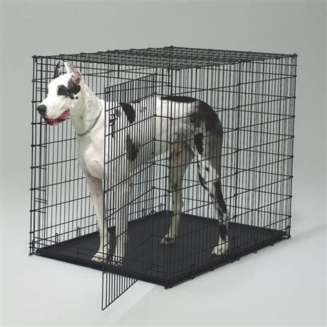 large wire crate midwest 1154u large crate black coated wire for big dogs cross peak products