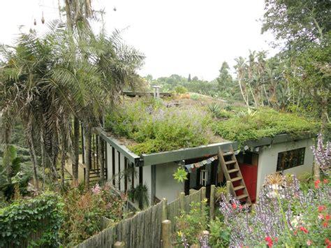 roof garden sprig