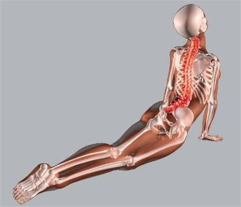 dormire con cuscino tra le gambe m 225 s de 25 ideas incre 237 bles sobre hernias de disco en