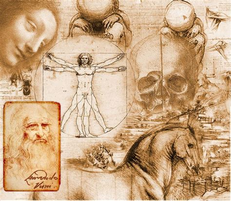 leonardo da vinci biography science the realm of the mystery warlords do artists penetrate