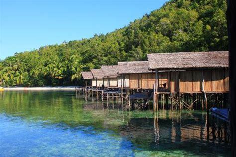 Rumah Diatas Ombak Novel gorgonian fan picture of raja at doberai eco resort raja at tripadvisor