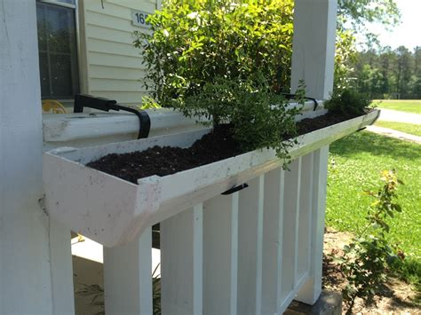 Gutters As Planters by 10 Gutter Garden Ideas To Spruce Up Your Garden