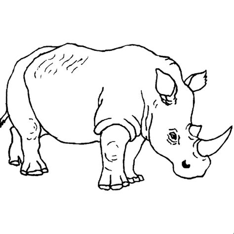 Rhino Coloring Pages rhino coloring pages coloringpagesabc