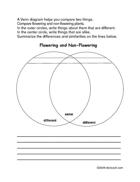 diagram worksheets 3rd grade venn diagram math worksheetsfirst grade products made from plants venn diagram worksheet