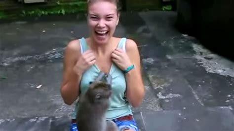 girl pulling down her shirt inappropriate monkey goes crazy trying to touch this woman