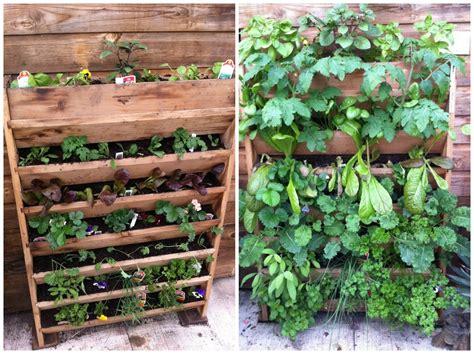 category vertical gardening burlington garden center