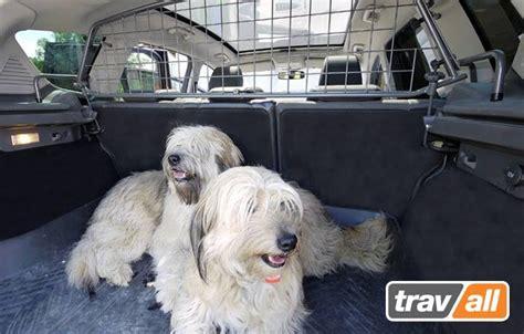 vacaciones de medio a 241 o 191 qu 233 hacemos con nuestros as viajar en coche con tu perro 191 c 243 mo pasar unas