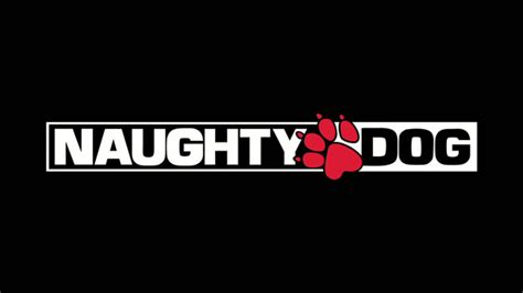 photos of naughty dogs around the world wallpapers pet o club a candid interview with evan wells and christophe balestra