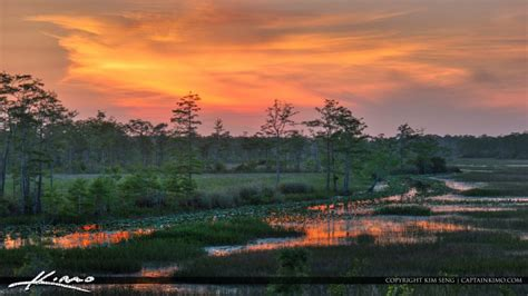 Weather Palm Gardens Florida by Sunset Florida Wetlands Palm Gardens