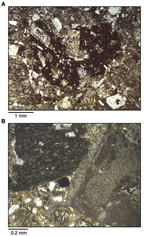 cpx thin section cpx thin section 28 images figure f21 photomicrograph