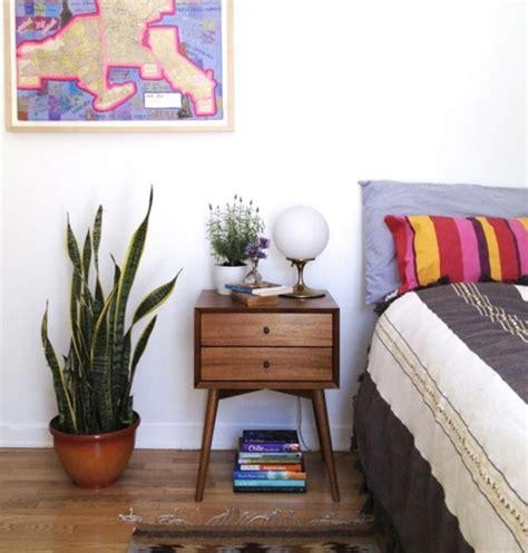 tanaman hias untuk kamar tidur dan kamar mandi bibitbunga