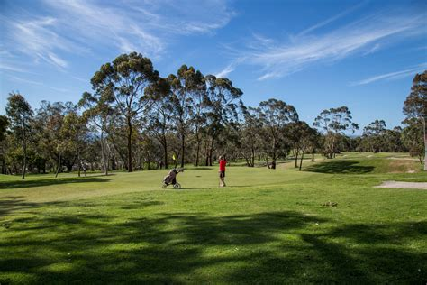 the enjoying golf on and the course books enjoy a of golf the holidays at mt martha golf
