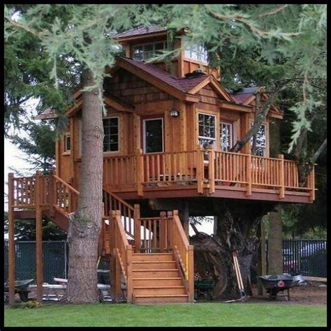 Tree Houses To Live In 31 Best Images About Tree Houses On Trees A