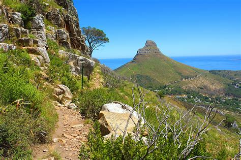 south table mountain trail south africa s iconic table mountain in cape town