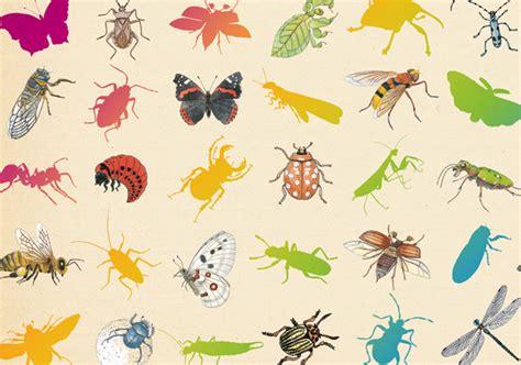 inventario ilustrado de insectos 8415250908 invent 225 rio ilustrado dos insetos virginie aladjidi e emmanuelle tchoukriel deusmelivro