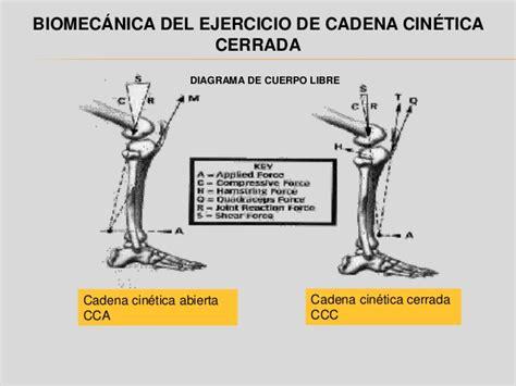 cadena cinetica ejercicios cadena cinetica