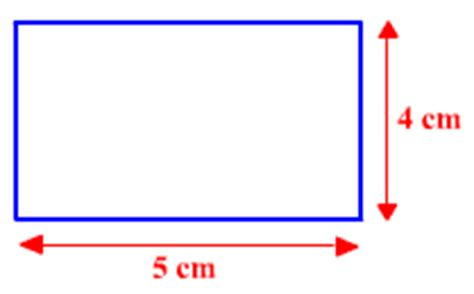 what is the length and width of a bed find the length and width of a rectangle