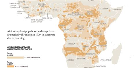 National Geographic Bloody Ivory elephants in peril