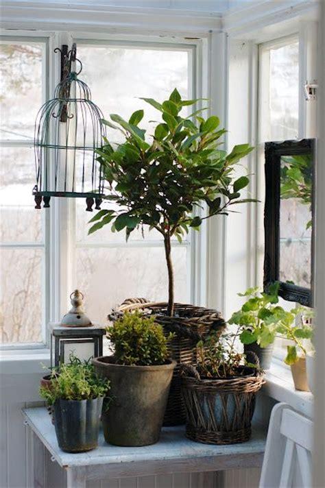 Corner Windows Decor 98 Best Images About Indoor Gardens On Pinterest Gardens Greenhouse Interiors And Indoor Pools