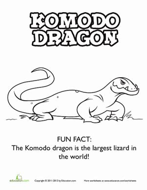 coloring pages of komodo dragon komodo dragon pages coloring pages