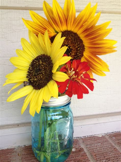 17 best images about flowers for vases grow your own
