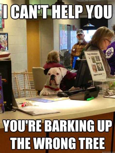 Barking Dog Meme - quot unhelpful dog receptionist quot quickmeme 187 barking up