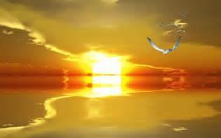 belles images anim 233 es soleil et mer