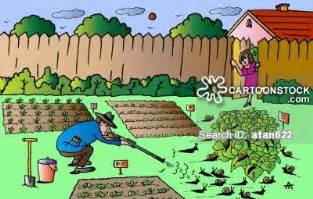Vegetable garden cartoons vegetable garden cartoon funny vegetable