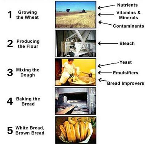 bread process flowchart 1000 images about embodied energy on