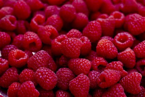 Teh Raspberry the meaning and symbolism of the word 171 raspberries 187
