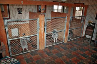 dog boarding kennels alternative kennel