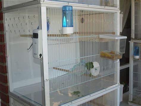 chillon gabbie periquitos de exposici 243 n la jaula de cria ideal para los