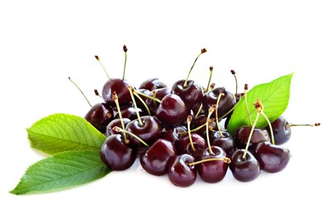 are cherries bad for dogs black cherry dosage for gout gout diet list of foods to