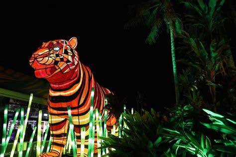 Australian Zoo Houses Stunning Illuminated Trail Of Lp Zoo Lights