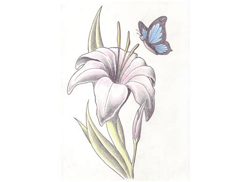 butterfly and lily tattoo designs 43 with butterfly tattoos ideas