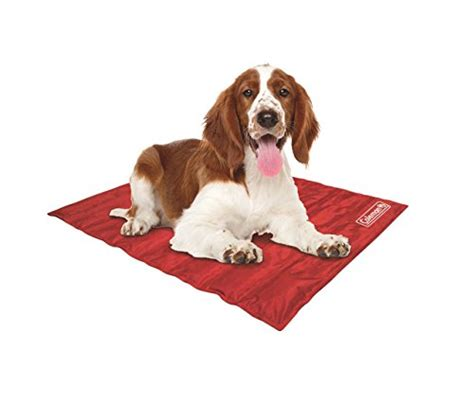 Mat For Dogs by Top 10 Best Cooling Mat For Dogs To Beat Summer Heat 2017