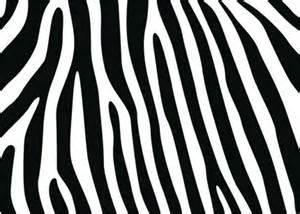 ornamentenn en tribals muurtattoo zebra patroon nr 1