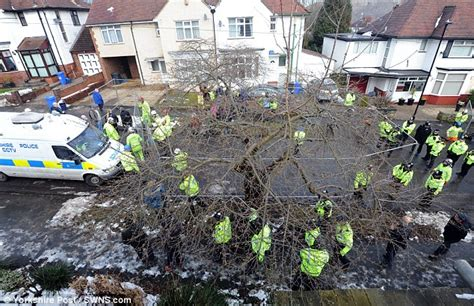 4 cherry tree drive sheffield sheffield council secret plan to cut its trees daily mail