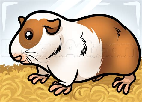how to a pig how to draw a guinea pig step by step pets animals free drawing tutorial
