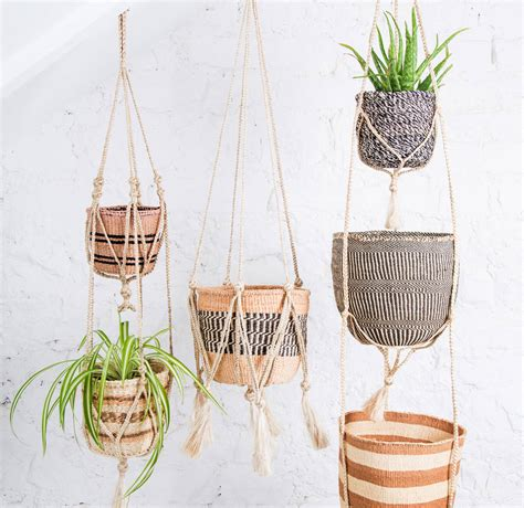 Where Can I Buy Macrame Plant Hangers - jute macrame plant hanger by the basket room