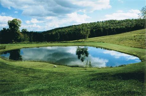 how to make backyard pond how to build a backyard pond tips from a professional pond builder