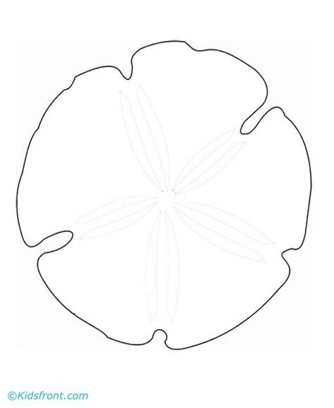 coloring page sand dollar free coloring pages of sanddollar