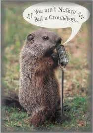groundhog day jokes pictures silly sunday groundhog day edition to breathe is to