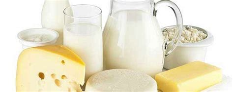 The Best Diet Milk And Cheese Department by Are Dairy Foods For You Dr Alan Christianson